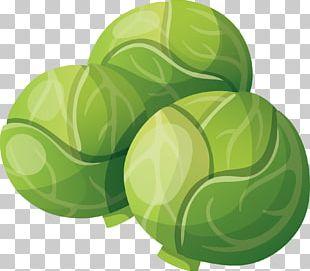 Organic Food Lasagne Vegetable Cabbage PNG