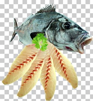Fish Fillet Seafood Fish Fillet PNG