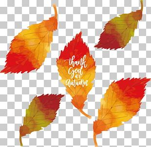 Leaf Autumn Watercolor Painting PNG