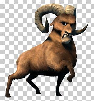 Argali Sheep Cattle Goat Mammal PNG