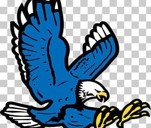 Auburn High School Auburn University Auburn Elementary School Auburn Tigers Football War Eagle PNG