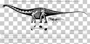 Supersaurus Ultrasaurus Saurophaganax Tyrannosaurus Dinosaur King PNG