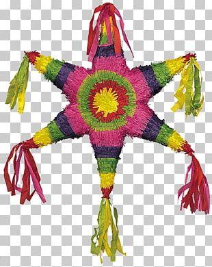 Piñata Party Cinco De Mayo Birthday Candy PNG