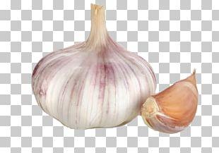 Garlic Calabaza Ajoblanco Chives Allium Fistulosum PNG