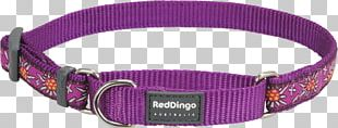Clothing Accessories Dog Collar Watch Strap PNG