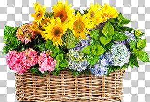 Flower Bouquet Stock Photography PNG