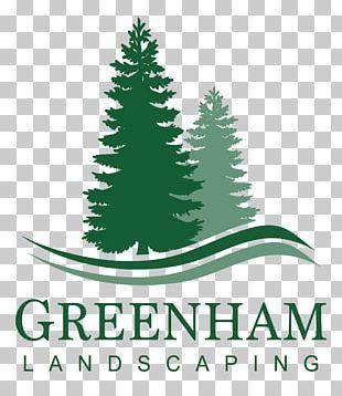 Evergreen Tree Pine Silhouette Fir PNG