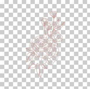Rose Family Visual Arts Drawing Illustration /m/02csf PNG