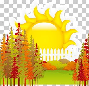 Sun Tree Poster Background Material PNG