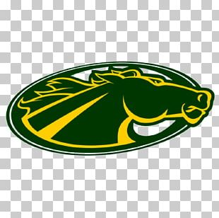 Skidmore College Thoroughbreds Women's Basketball St. Thomas Aquinas College University PNG