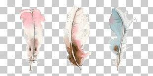 Watercolor Painting Drawing Art Feather PNG