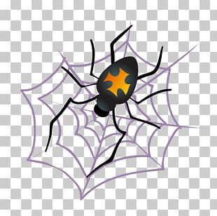 Tangle Web Spider Halloween Spider Web PNG