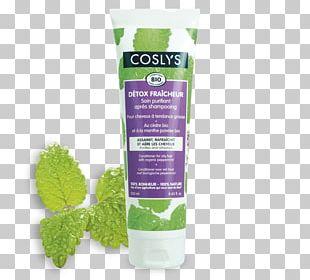 Shampoo Hair Conditioner Capelli Cosmétique Biologique Cosmetics PNG