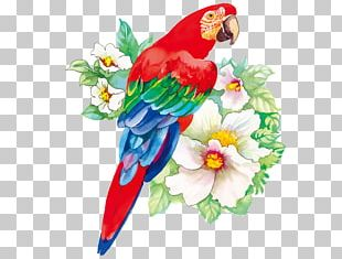 Bird Flower Drawing Watercolor Painting PNG
