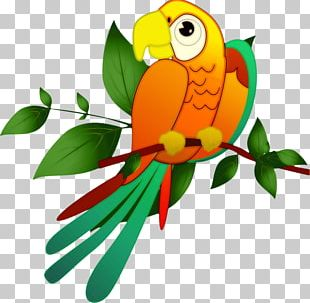 Macaw Bird In The Tree Parakeet PNG