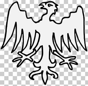 Heraldry Artist Roll Of Arms Beak PNG