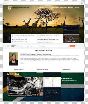 Web Design Web Hosting Service Sul Africa PNG