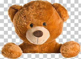 Teddy Bear Giant Panda Stuffed Toy PNG