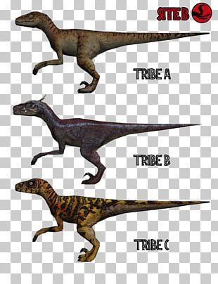 Velociraptor Grand Theft Auto: San Andreas Tyrannosaurus Trespasser Jurassic Park: The Game PNG