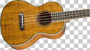 Fender Nohea Koa Tenor Ukulele Acoustic Guitar Bass Guitar Musical Instruments PNG