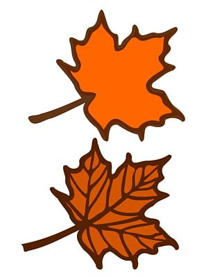 Red Maple Maple Leaf PNG