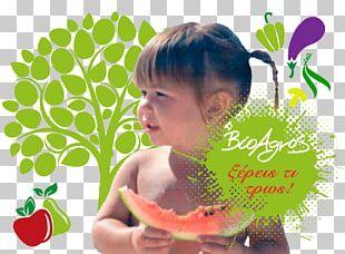 Watermelon Organic Food Organic Farming Vegetable PNG