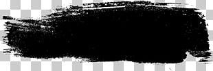 Ink Brush Black And White Paintbrush PNG