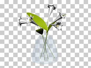 Vase Autodesk 3ds Max Autodesk Revit .dwg .3ds PNG