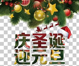 Christmas Tree New Year Christmas Ornament PNG