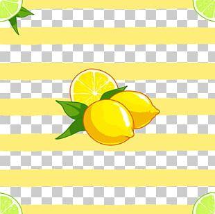 Sweet Lemon Lime Orange PNG