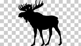 Moose Deer Silhouette PNG