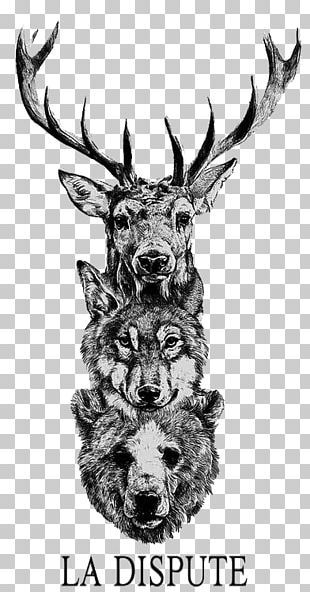Red Deer Gray Wolf Bear Moose PNG