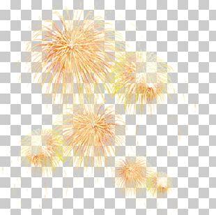 Adobe Fireworks Firecracker PNG