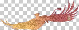 Bird Digital Art Drawing Line Art PNG