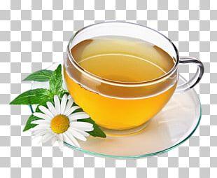 Green Tea Herbal Tea Drink Chamomile PNG