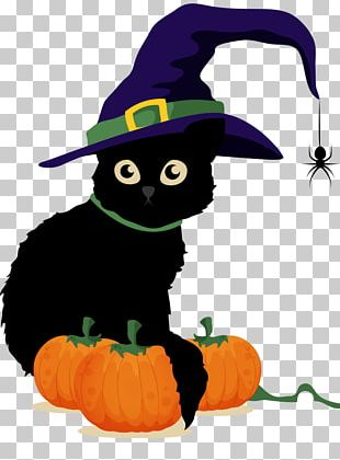 Halloween Poster Drawing Black Cat PNG