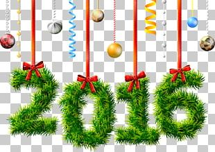 New Year's Day New Year's Eve Christmas PNG