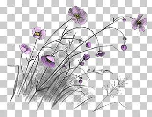 Drawing Floral Design Art Flower PNG