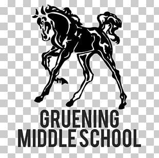 Gruening Middle School School District Student PNG