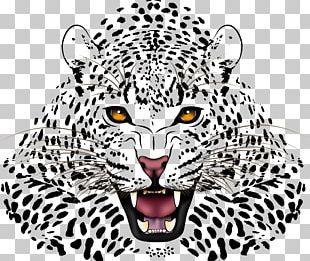 Leopard Jaguar Cheetah Black Panther PNG