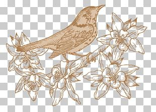 Bird Flower Floral Design PNG