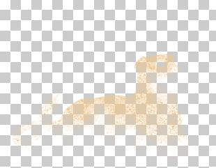 Canidae Dog Snout Mammal PNG