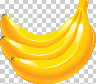 Banana Fruit Icon PNG