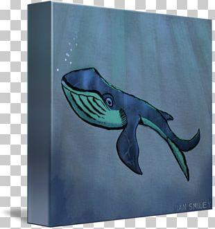 Marine Mammal Marine Biology Organism Fauna PNG