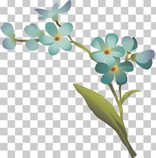 Flower Floral Design Leaf Petal Plant Stem PNG
