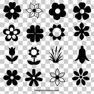 Flower Nelumbo Nucifera Drawing PNG