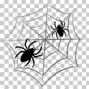 Spider Web Halloween PNG