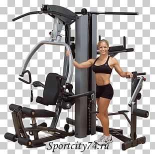 Exercise Equipment Fitness Centre Human Body Physical Fitness PNG