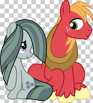Pinkie Pie Rarity Applejack Rainbow Dash Twilight Sparkle PNG