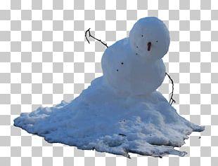 Snowman Pale Man Eye PNG
